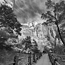 First Visit to Zion #2 by Barbara Manis