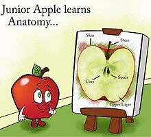 Junior Apple Lesson by Amber Witt