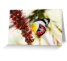 Scarlet Jezebel Greeting Card