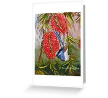 "Blue Wren  ""Wren's Chatter""  SOLD Brisbane Greeting Card"