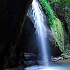 Buderim waterfalls by Beth  Wode