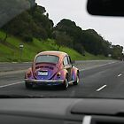 Volkswagen Custom Painted Beetle by sl02ggp
