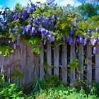 Painted Wisteria by WiredMarys