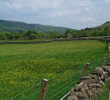 Swaledale at Thwaite by WatscapePhoto
