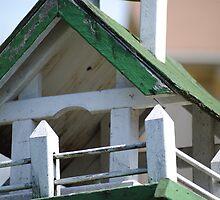 Aged Birdhouse by Taylor Katz