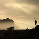 Sea mist by Gordon Slater