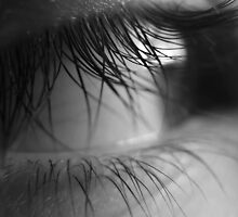 Lanis eye in black N white by Bernie Stronner