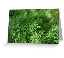 Dill Greeting Card