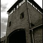 Auschwitz Birkenau - The Death Gate II by Peter Harpley