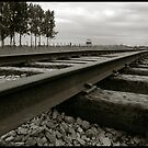 Auschwitz Birkenau - Railway by Peter Harpley
