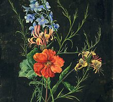 Flowers on Black (Watercolour 1937) by wippapics