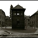 Auschwitz I Roll Call Hut by Peter Harpley