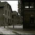 Auschwitz I Roll Call Hut (panoramic) by Peter Harpley