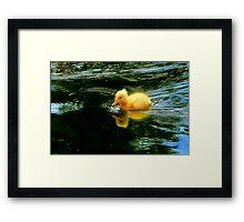 James Dean~ The Little Rebel Framed Print