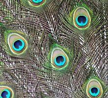 Nature's Paintbrush by Corkle