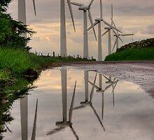 Roadside Reflections by Dave Warren