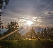 Morning Sun by Johannes Bildstein