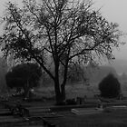 Lonely Tree by KellieJayne