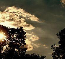 Cumulus Mediocris by Erika Townsley
