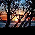 Sunset by Anita Ciancio