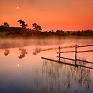 Knapps Moonset by David Mould