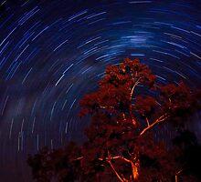 Star trails. by trevorb