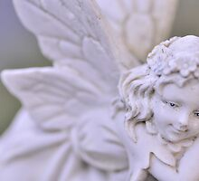 Fairy, As Is by Kim McClain Gregal