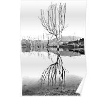 Dusk at Lake Eildon #2 Poster