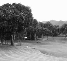 Mt. Malarayat Golf Course in black and white by walterericsy
