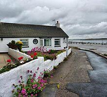 Sea Dyke cottage . by Lilian Marshall