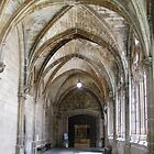 Gothic Arches, Burgos, Spain by jtalia