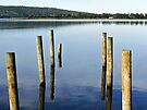 Jetty Eden New South Wales by Trish Loader