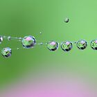 Festival of Drops by AnnieSnel