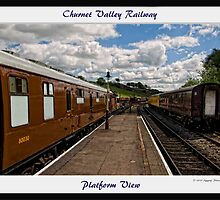 Cheddleton Platform by Aggpup