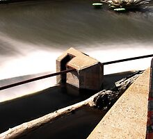 Above the Fox River Dam in Waukesha. Dragonfly in Background by James Formo