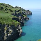 Bossiney cliffs!! North Cornwall! by greenstone