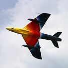 Colourful flight by Stretch75