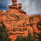 Red Canyon by Barbara Manis