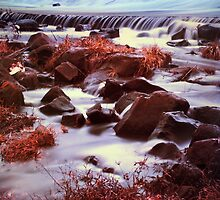 Coburg Lake Weir by Angie Muccillo