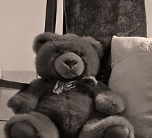 Teddy in the rocking chair by mltrue
