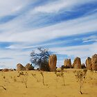Pinnacles Desert, Cervantes W.A. - gcdepiazzi by gcdepiazzi