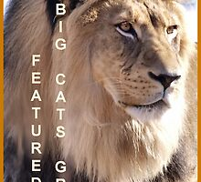 Banner for Avatar Challenge by Barb Miller