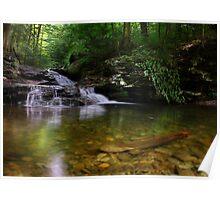 Waters Meet - June 2010 Poster