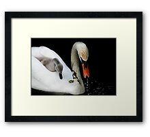 This is the life Framed Print