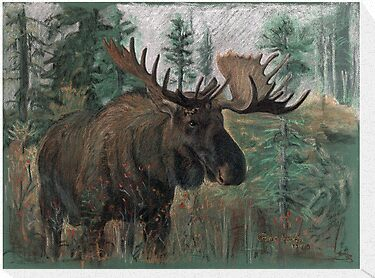 The Moose by keepsakeart