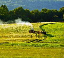 Making Hay In PA by BigD