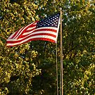 Old Glory by BarbL