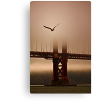 Flying Into the Fog Canvas Print