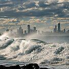 EDITOR OF AUSTRALIA by Scott  d'Almeida