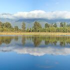 Lake Matheson NZ by keith55g
